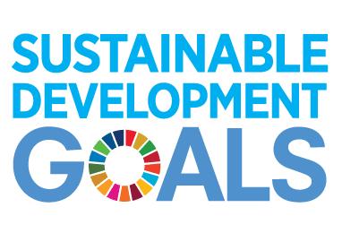 Logo for FN Verdensmål SDG